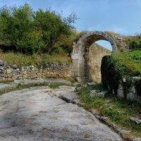 Старые ворота :: Андрей Хомяков