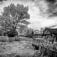 Деревня :: Вадим Смирнов