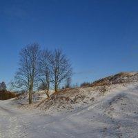 Зима. :: zoja