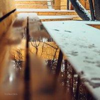 Таянье снега открывает другую реальность. :: Сергей Станкевич