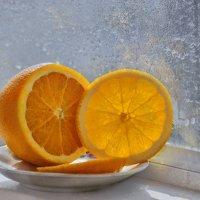 Зимнее солнышко :: galina tihonova