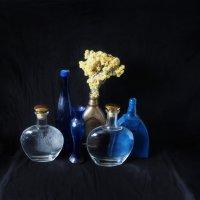 В синем :: Дубовцев Евгений