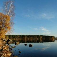 осень :: Alla Swan