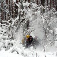 игры в сказочном лесу :: Александр Прокудин