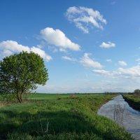 Стандартный пейзаж :: Андрей Майоров
