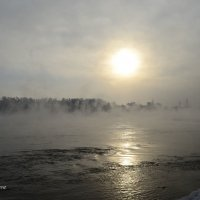 Зимним утром :: galina tihonova