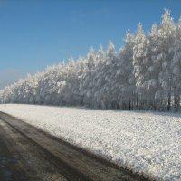 Альберт Арсланов - Зимняя дорога :: Фотоконкурс Epson