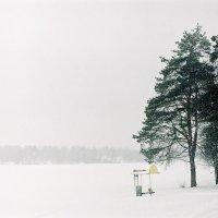 Михаил Алейников - без названия :: Фотоконкурс Epson