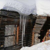 Зима на заимке :: Наталия Ремизова