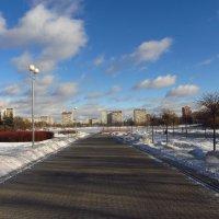 Февраль - это почти весна :: Андрей Лукьянов