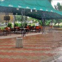 Весенний дождик :: Нина Корешкова