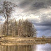 Река Обь :: Андрей Кузнецов