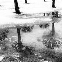 Была зима.... :: Лана Григорьева