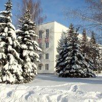 Мой любимый город в пушистом снегу :: Лидия (naum.lidiya)
