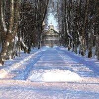 Петровское, зима. :: Нина