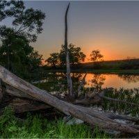 Умирающее озеро :: Роман Тимошенко