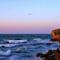 Море Азовское(Крымский берег) :: владимир