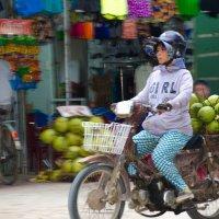 Вьетнам. Ня Чанг. Февраль 2016г. Везде кокосы, у всех кокосы))) :: Наталья Александрова