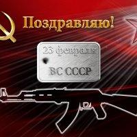 С праздником! Ветеран! :: Виктор Никаноров