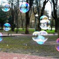 мыльные пузыри. :: Леонид Натапов