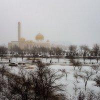 Такая разная погода. Снег. :: Анатолий Чикчирный