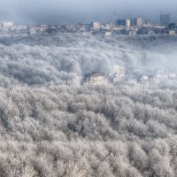 Вид из окна :: Андрей Евстифеев