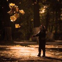 Листья в небо отпустить! :: Мария Шустова