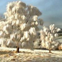 зима в средней полосе России :: Владимир Беляев ( GusLjar )