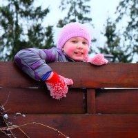 На заборе :: Анастасия Жучкова