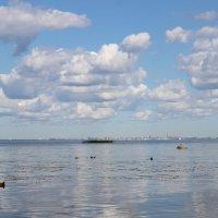 Финский залив :: Кирилл Шестопалов