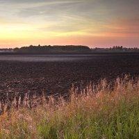 Закат над полем :: Андрей Кузнецов