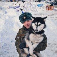 Хаски Фест :: Ольга Степанова