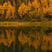 Золотые наряды от осени :: Сергей Чиняев