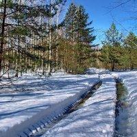 И снега тающая грусть... :: Лесо-Вед (Баранов)