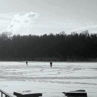 Графика зимы :: Надежда Бахолдина