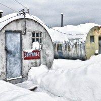 Отель 5 звезд... :: Светлана Игнатьева