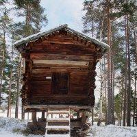 У леса, на опушке.. :: Lena Li