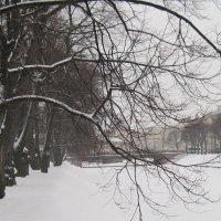 Набережная реки Мойки. Февраль :: Маера Урусова