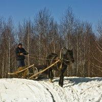 Зимой в деревне :: Ольга Фролова