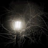 Ночь :: Константин Ощепков
