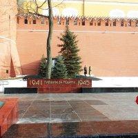 Февральским днем у Кремлевской стены... :: Лара ***