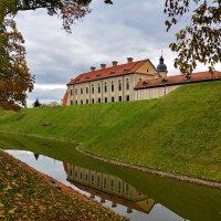 Несвижский замок в отражении. :: Paparazzi