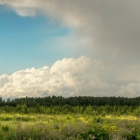Перед грозой :: Serge Serebryakov