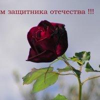 С ДНЕМ ЗАЩИТНИКА ОТЕЧЕСТВА, ДОРОГИЕ ДРУЗЬЯ-МУЖЧИНЫ !!! :: Елена Даньшина