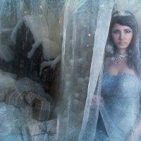 За снежной пеленой твои глаза печальные... :: Ева Олерских