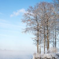 Зимний день :: Астарта Драгнил