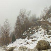 выше туман :: Сергей Савич.