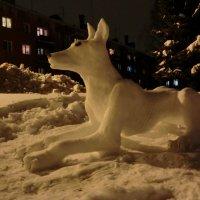Великие Луки. Снежный пёс... :: Владимир Павлов