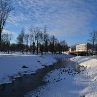 Утиная река. :: zoja
