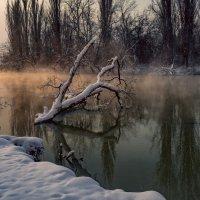 Падал снег :: Александр Плеханов